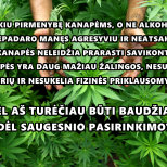Kanapė yra mažiau žalinga, nei alkoholis. Kanapė, negali būti kontroliuojama grieščiau, nei alkoholis.