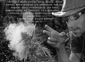 Franco Loja - Strain Hunters (Green House Seeds)